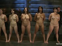 Lined up slave girls masturbate with wand vibrators for you to see